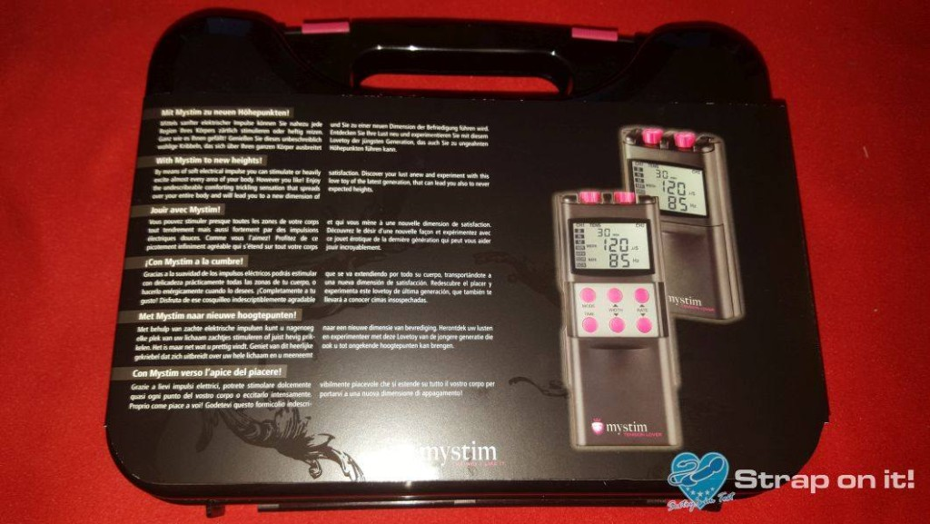 Elektrostimulationsgerät Mystim Tension Lover: Koffer von hinten.